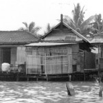 Photo of Bangkok klong, 1960s