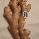 Hand of fresh ginger from Hawaii